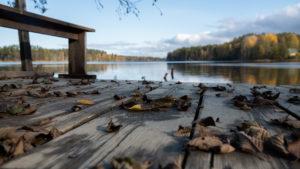 Осенний пейзаж на базе отдыха Заветное в Ленинградской области